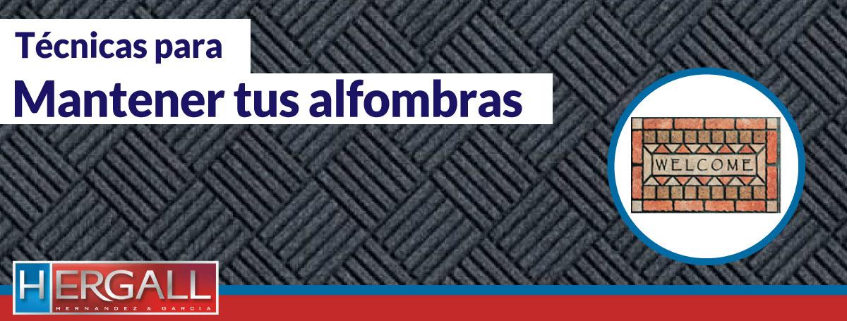 Manteniendo tus alfombras hern ndez garc a srl - Productos para limpiar alfombras en casa ...